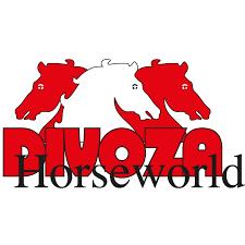 Divoza Horseworld screenshot